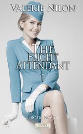 The Flight Attendant: Erotic Novel