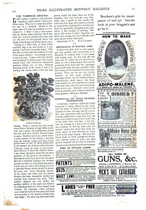 Vick s Illustrated Monthly Magazine PDF