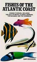 Fishes of the Atlantic Coast PDF
