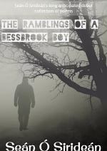 The Ramblings Of A Bessbrook Boy