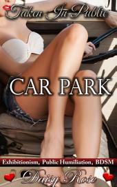 "Car Park: Book 2 of ""Taken In Public"""
