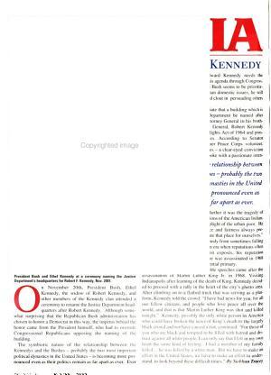 Irish America PDF