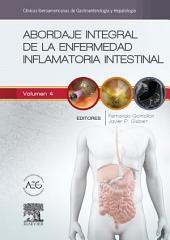 Abordaje integral de la enfermedad inflamatoria intestinal: Clínicas Iberoamericanas de Gastroenterología y Hepatología, Volumen 4
