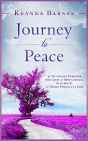 Journey to Peace Book