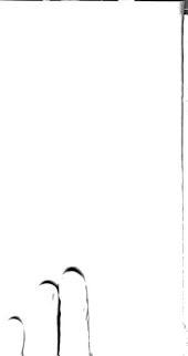 Sanctissimi domini nostri domini Pii divina providentia Papae sexti, Damnatio quamplurium propositionum ... atti e decreti del concilio diocesano di Pistoja dell'anno 1786 ...