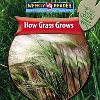 How Grass Grows PDF
