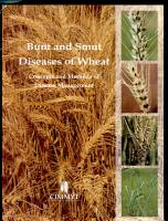 Bunt and Smut Diseases of Wheat PDF