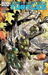 Teenage Mutant Ninja Turtles #29