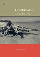 Combinatorics PDF