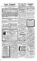 Passauer Zeitung0 PDF