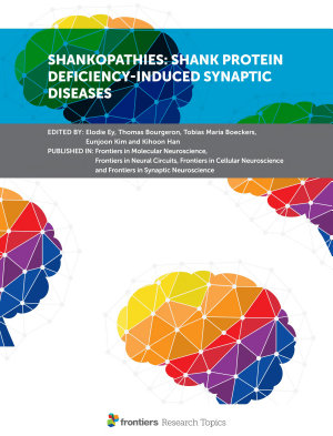 Shankopathies: Shank Protein Deficiency-Induced Synaptic Diseases