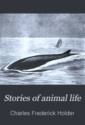Stories of animal life