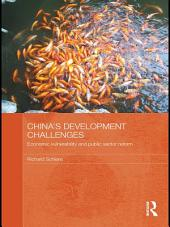 China's Development Challenges: Economic Vulnerability and Public Sector Reform