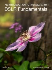 DSLR Fundamentals: An Introduction To Photography