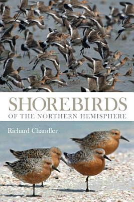 Shorebirds of the Northern Hemisphere PDF