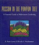 Possum in the Pawpaw Tree