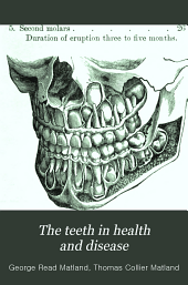 The teeth in health and disease