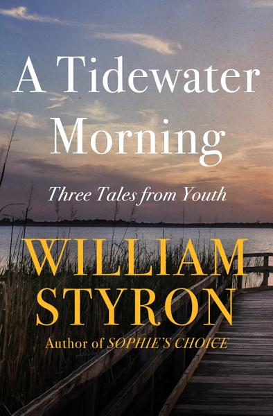 Download A Tidewater Morning Book