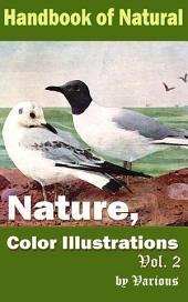 Nature, Color Illustrations Vol.2: Handbook of Nature