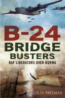 B-24 Bridge Busters