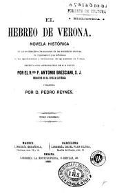 El Hebreo de Verona: novela histórica en que se descubren los misterios de las sociedades secretas, su organizacion y su influencia en los sacudimientos y revoluciones de las naciones de Europa