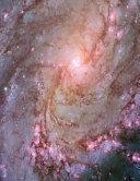 Southern Pinwheel Galaxy Space Notebook