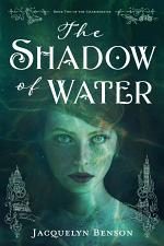 The Shadow of Water