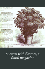 Success with Flowers, a Floral Magazine