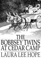 The Bobbsey Twins at Cedar Camp PDF