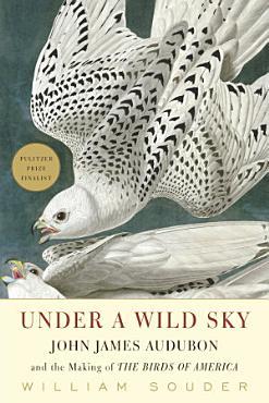 Under a Wild Sky PDF