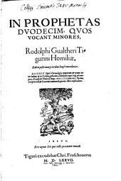In Prophetas duodecim minores quos vocant homiliae