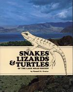 Snakes, Lizards & Turtles of the Lake Mead Region