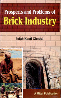 Prospects and Problems of Brick Industry PDF
