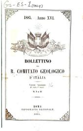 Bollettino: Volume 16