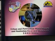 Urban and Peri urban Water Supply and Sanitation Sector Report PDF