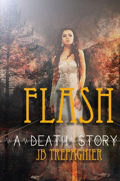 Download Flash A Death Story Book