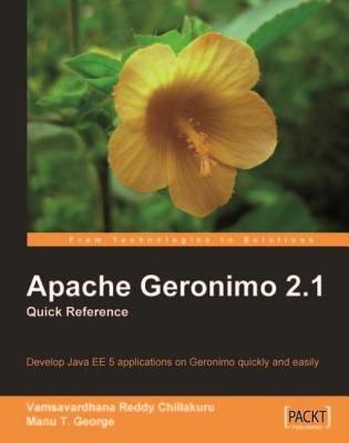 Apache Geronimo 2 1