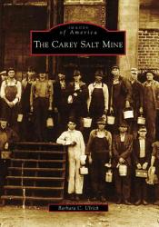 The Carey Salt Mine Book PDF