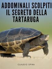 Addominali Scolpiti : Il Segreto della Tartaruga