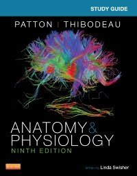 Study Guide for Anatomy   Physiology   E Book PDF