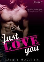Just love you. Erotischer Roman