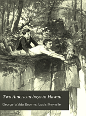 Two American Boys in Hawaii
