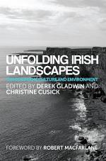 Unfolding Irish landscapes