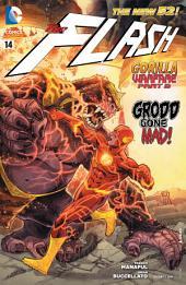 The Flash (2011- ) #14