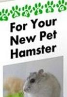 For Your New Pet Hamster PDF