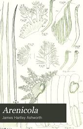 Arenicola: the lug-worm