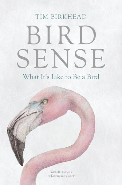 Download Bird Sense Book