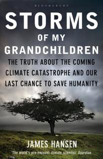 Storms of My Grandchildren Book