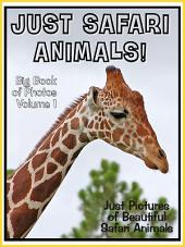 Just Safari Animals! vol. 1: Big Book of Jungle Safari Animal Photographs & Pictures