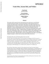 Trade Policy, Income Risk and Welfare